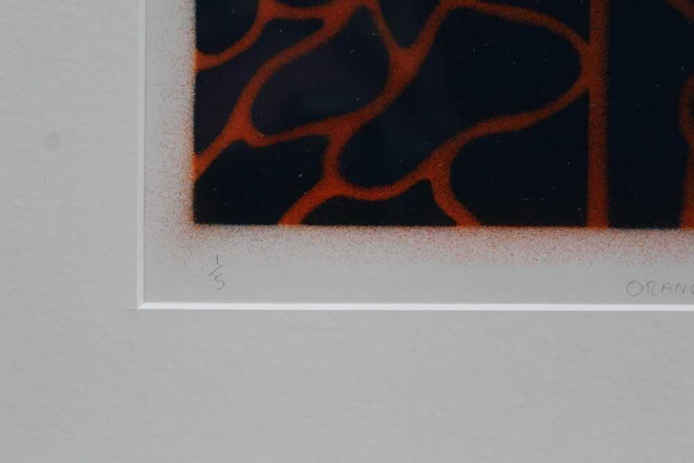 Ron Sims (1944-2014) signed limited edition stencil / enamel print - Orange Cat Streamers, 1/50, 20c - Image 5 of 7