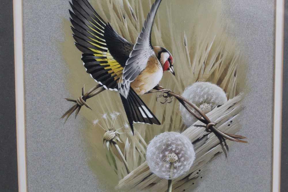 Terence Bond - bullfinch - Image 4 of 4