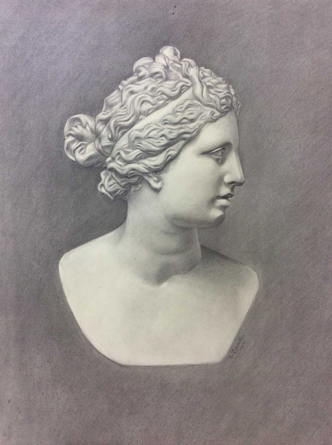 Konrad Meindl (1883-1970) group of eight charcoal works on paper - studies of Classical busts, each - Image 2 of 8