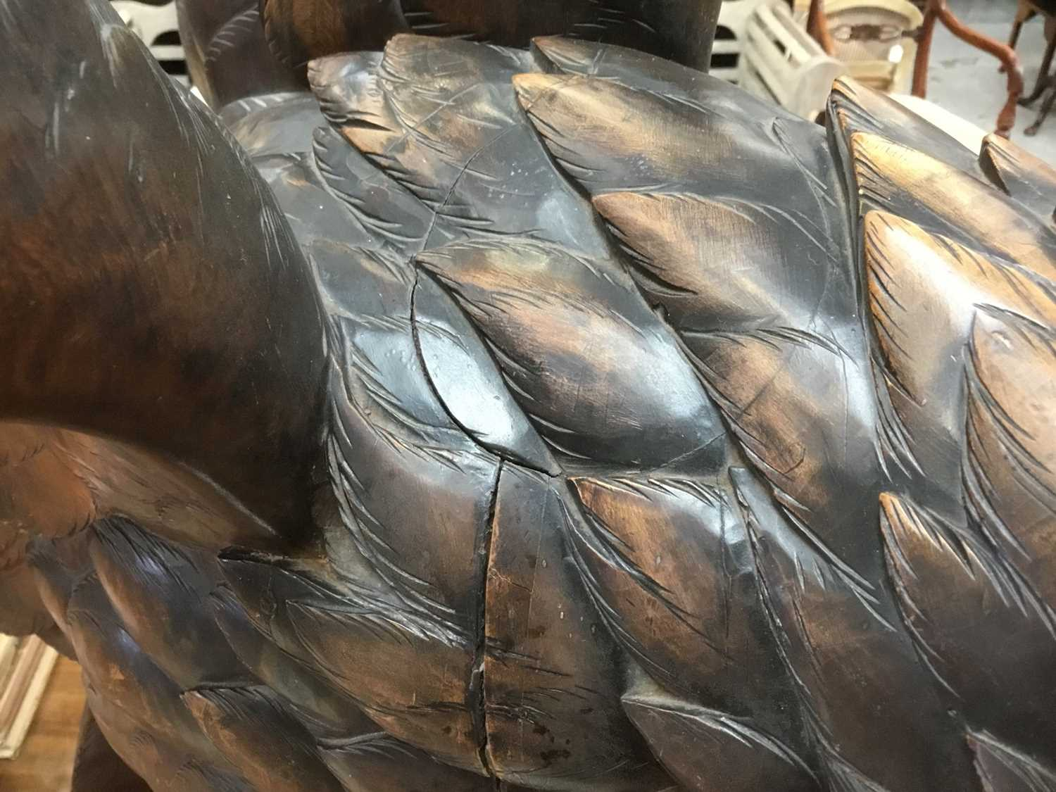 Exceptional late 19th / early 20th century Black Forest carved lindenwood figure of an eagle - Image 16 of 28