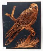 Dick Twinney: a copper plaque with study of perching hawk - signed