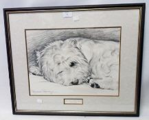 †Pollyanna Pickering: a framed monochrome print study of a West Highland white terrier