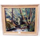 Brenda Gough: a framed oil on board, entitled In Bradley Woods - signed