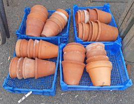 Four trays of terracotta pots