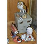 A BOXED ROYAL CROWN DERBY MODEL OF AN OWL, naturalistically modelled and painted, printed backstamp,