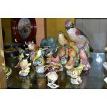 SIXTEEN ROYAL WORCESTER MATT GLAZED BIRD FIGURES, comprising 3248 Jay, 3234 Thrush, 3235 Kingfisher,