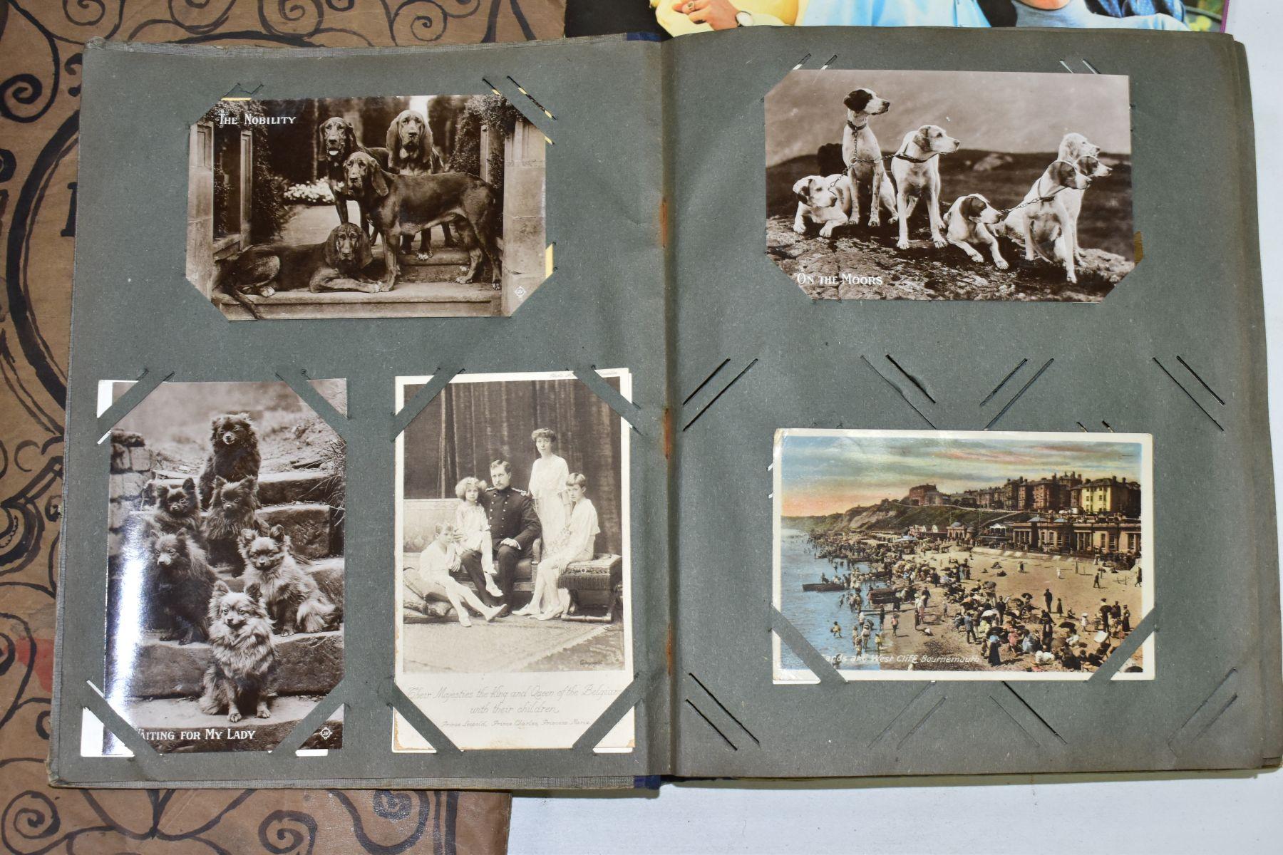 EPHEMERA, once box containing three Edwardian Postcard Albums (approximately 325 postcards), to - Image 15 of 23