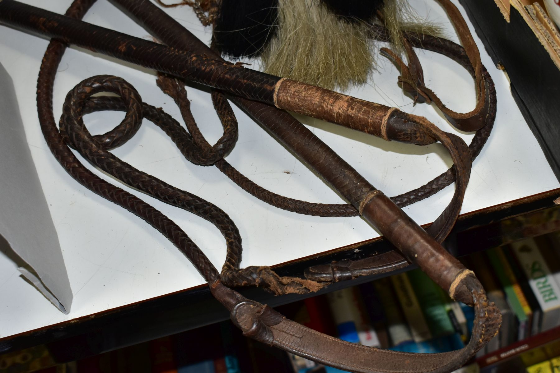 TWO LEATHER WHIPS, bone handles, metal mounts one with engraved coronet, worn condition, with a semi - Image 5 of 6