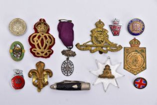 A BOX CONTAINING A NUMBER OF MILITARY RELATED BADGES, PINS, CAP BADGES ETC, South Staffs RA, For