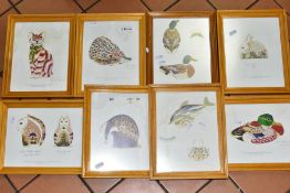 EIGHT PRINTS OF DESIGNS FOR ROYAL CROWN DERBY FOR JOHN SINCLAIR PAPERWEIGHTS, artwork by J.Ablitt,
