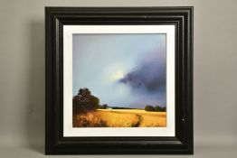 BARRY HILTON (BRITISH 1941) 'GOLDEN FIELDS OF HOME', a limited edition print of a landscape 51/
