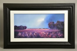BARRY HILTON (BRITISH 1941) 'SHADES OF DUSK', a limited edition print of a landscape 20/195,