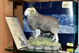 A BOXED BORDER FINE ARTS LIMITED EDITION SCULPTURE, 'Herdwick Tup', model No 0705 by Ray Ayres, No