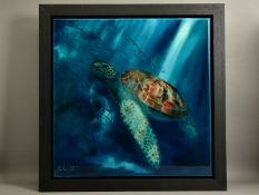 JULIE ANN SCOTT (BRITISH CONTEMPORARY) 'TURTLE III' an underwater study of a Turtle, signed bottom
