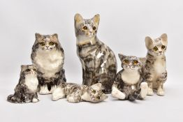 SIX WINSTANLEY CATS, all signed, all glass eyes, 30cm, 24.5cm, 23cm, 17cm, 12.5cm and 20cm in length