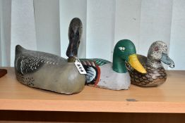 THREE LATE 20TH CENTURY PAINTED WOODEN MODELS OF DECOY DUCKS, largest with turned head, length 39cm,