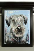 SAMANTHA ELLIS (BRITISH 1992) 'A LOYAL FRIEND', a contemporary portrait of a Schnauzer dog, signed