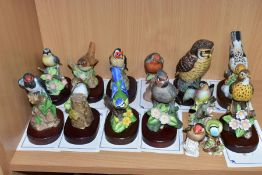 FOURTEEN CERAMIC BIRD FIGURES, eleven from The Danbury Mint 'The Beautiful Birds Collection', ten