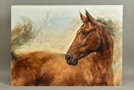GARY BENFIELD (BRITISH 1965) 'PATIENCE III', a study of a brown horse, signed bottom left, oil on