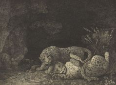 After George Stubbs ARA, British 1724-1806- Tygers at Play; restrike etching, probably outside of