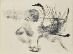 Sir Sydney Nolan OM AC CBE, Australian 1917-1992- Number 2, The Leda Suite, 1961; lithograph on