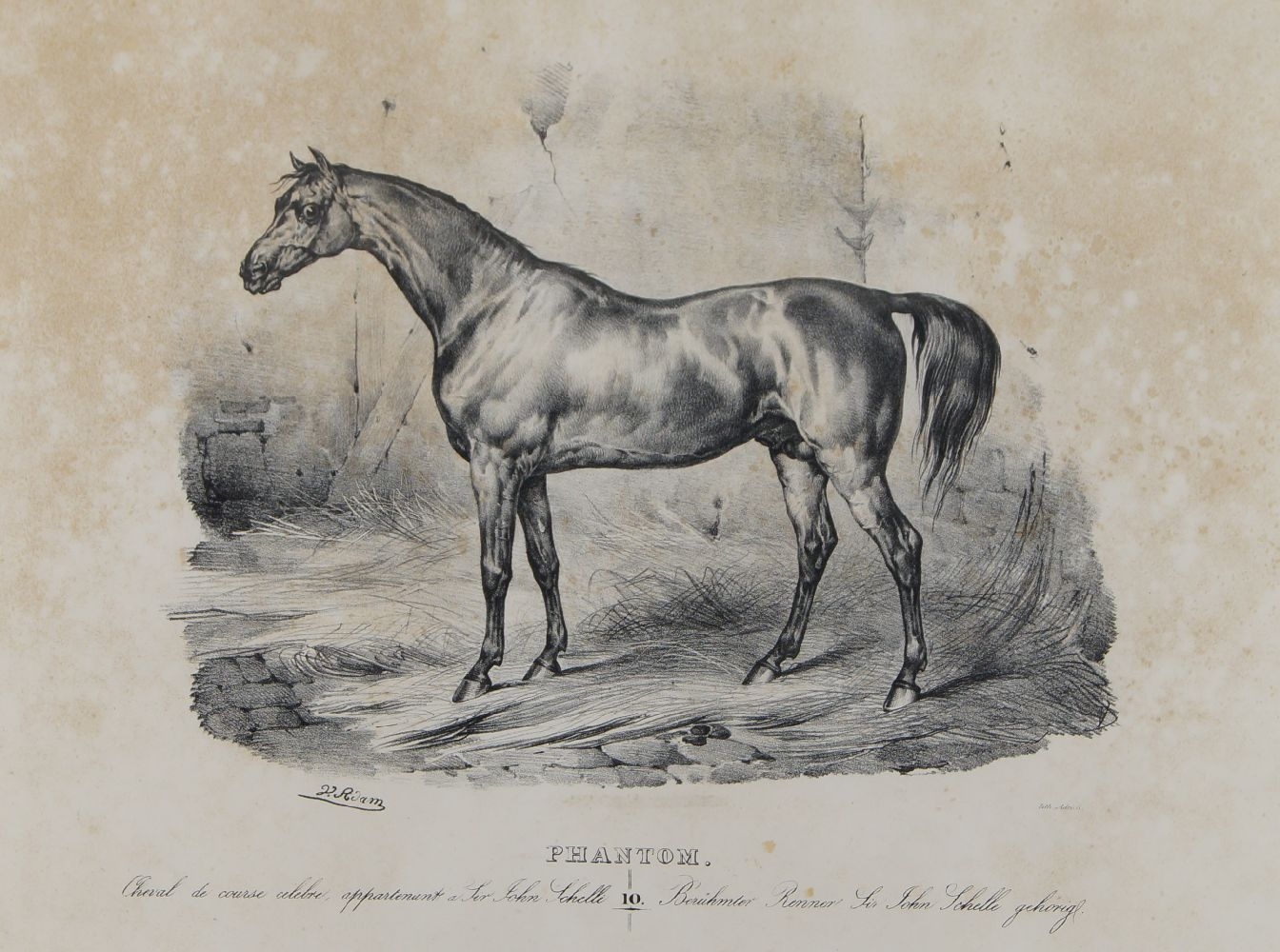 After Victor Adam, French 1801-1866- Le Leopold; Monitor; Phantom; Moser & Le Persan (plates 5, 6,