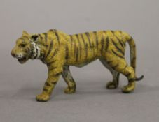 A cold painted bronze model of a tiger. 10.5 cm long.
