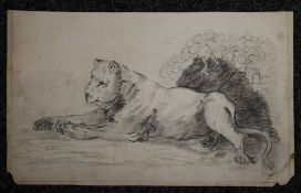 An early 19th century pencil drawing of a Lioness, indistinctly signed, dated 1813. 45 x 27 cm.