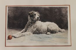 After HERBERT DICKSEE, etching of a dog, Ready. 55 x 35 cm.