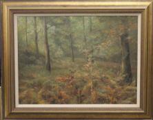 T LUKKIEN, Deer in Woodland, oil on canvas, framed. 58.5 x 43 cm.