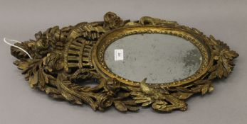 A 19th century carved gilt wood wall glass. 55 cm high.