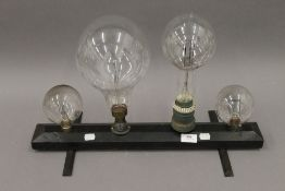 Four early 20th century large light bulbs mounted on a wooden display plinth. 56 cm wide.