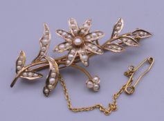 A 9 ct gold seed pearl set floral brooch. 5 cm long. 5.1 grammes total weight.
