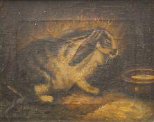 Oil on canvas, Rabbit, framed. 24 x 19 cm.