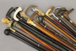 A large quantity of various walking sticks.