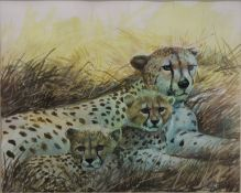 CHARLES CLIFFORD TURNER (1920-2018) British, Cheetah and Cubs, watercolour, signed,