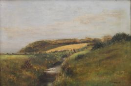 Country Stream, oil on canvas, indistinctly signed, framed. 44.5 x 29.5 cm.