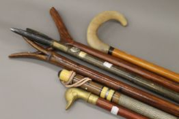 A quantity of various walking sticks. The largest 152 cm high.