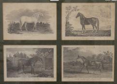 After GEORGE STUBBS (1724-1806) British, Arabian Thoroughbreds,