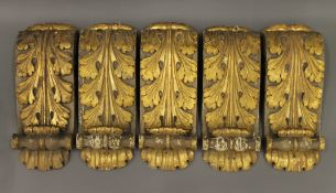 A set of five 19th century carved gilt wood corbels. Each 37 cm high.