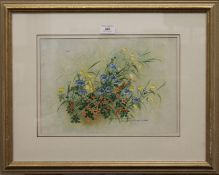 CHRISTOPHER SCALES, Wild Summer Fields, watercolour, signed, framed and glazed. 34 x 24 cm.