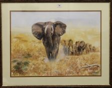 CHARLES CLIFFORD TURNER, Leader of the Elephant Herd, watercolour, signed, framed and glazed.
