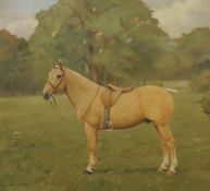 FLORENCE MABEL HOLLAMS (1877-1963) British (AR), A Portrait of a Palomino Hunter in a Field,