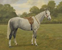 FLORENCE MABEL HOLLAMS (1877-1963) British (AR), A Portrait of a Dapple Grey Hunter in a Field,
