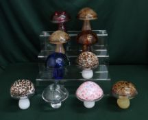 Wedgwood glass mushrooms in various colours and designs, H10cm (10)
