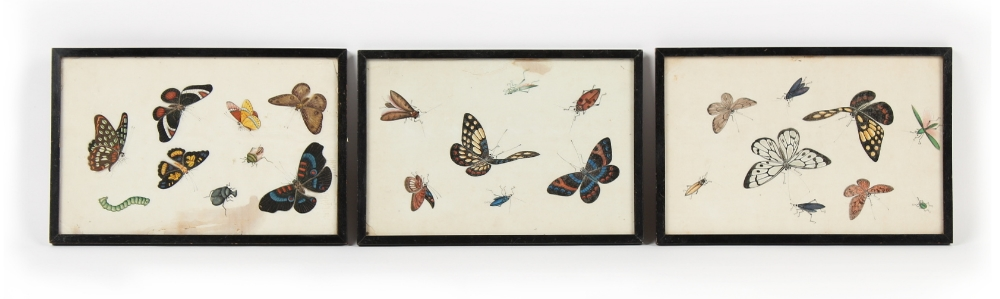 Property of a gentleman - a set of three 19th century Chinese paintings on pith paper depicting