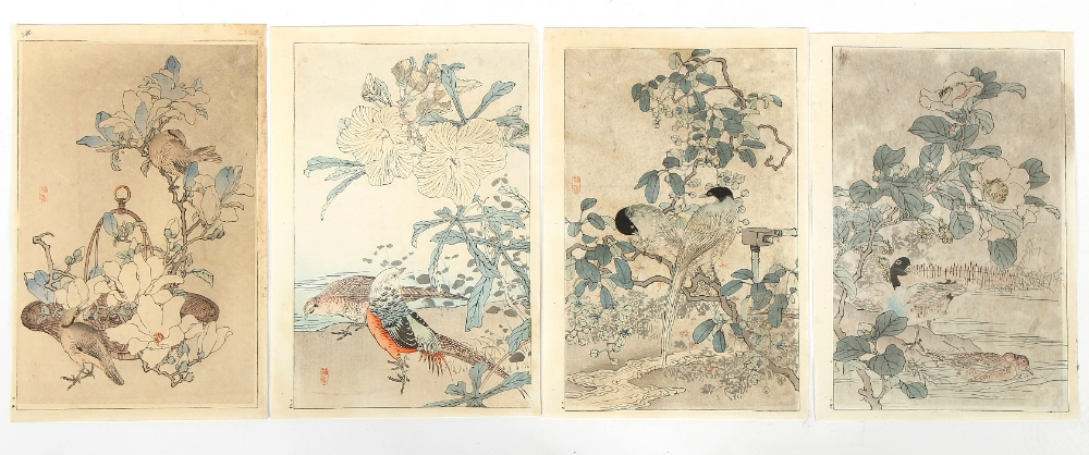 A collection of Japanese woodblock prints - Bairei Kono (1844-1895) - Bird and Flower