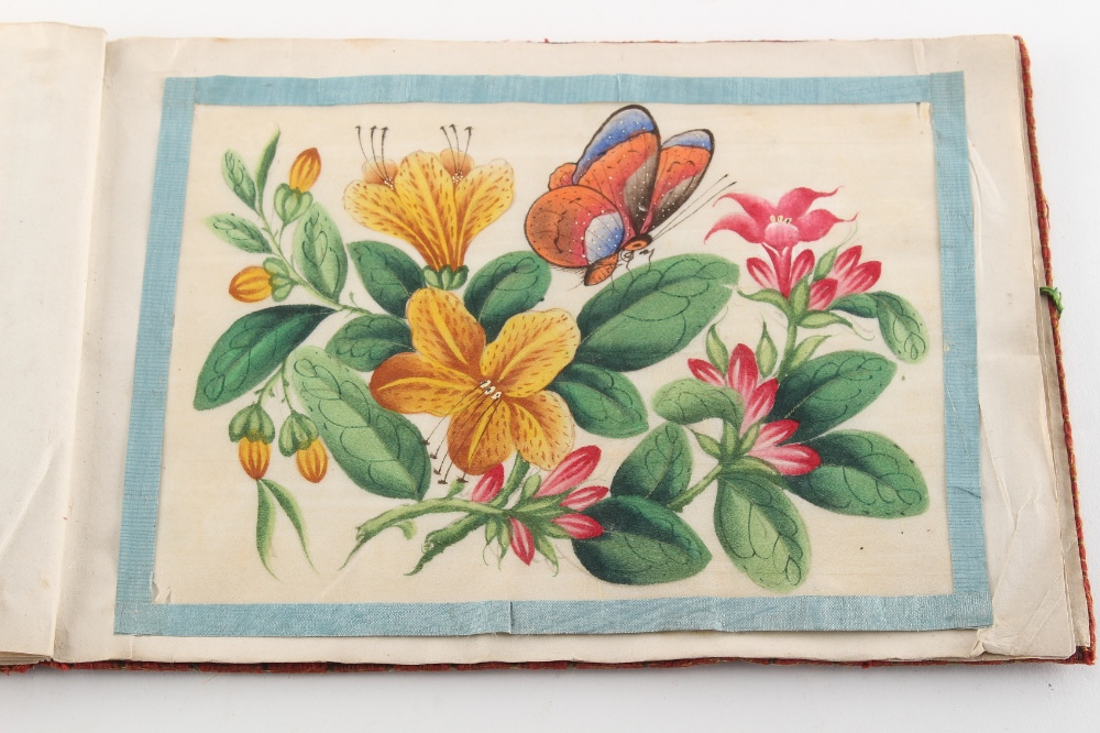 A complete album of twelve 19th century Chinese paintings on pith paper depicting butterflies & - Image 4 of 4