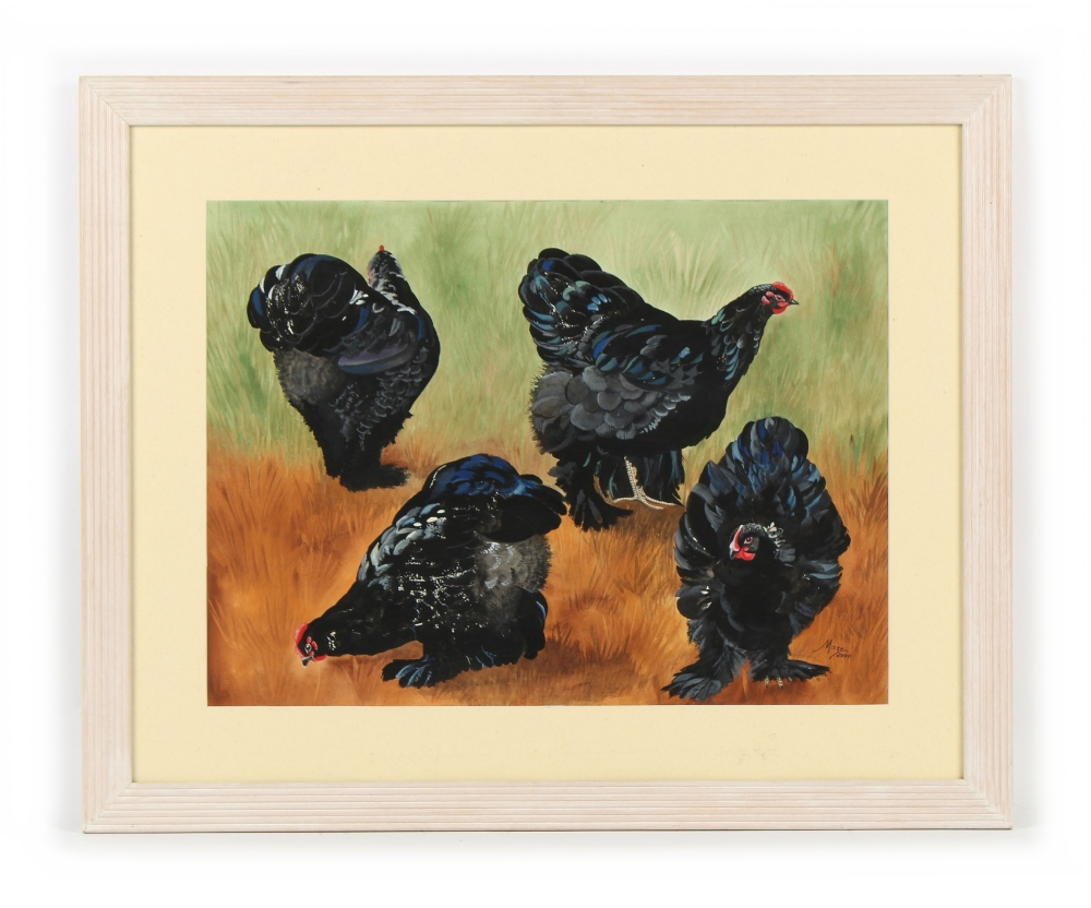 Property of a deceased estate - Maze (late 20th / early 21st century) - BLACK COCHIN CHICKENS -