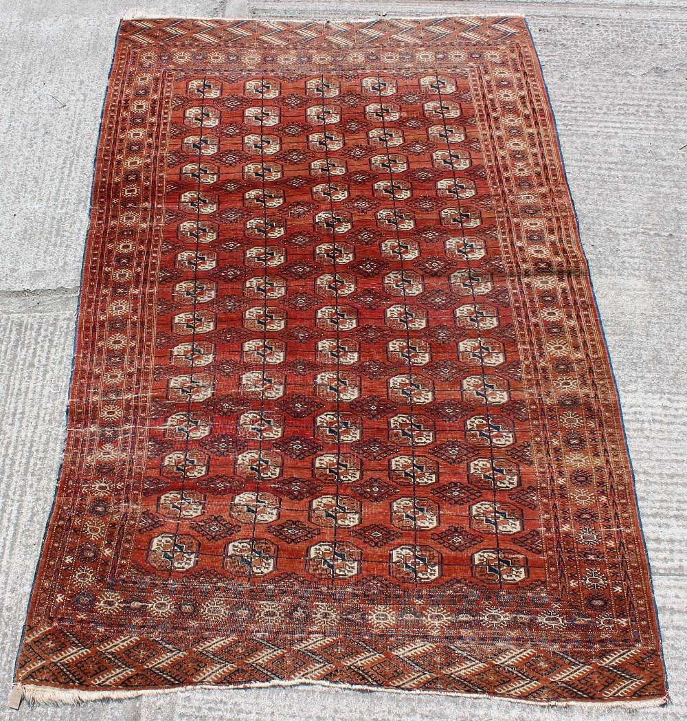 Property of a gentleman - a Turkoman carpet with five rows of octagonal guls, 130 by 83ins. (330